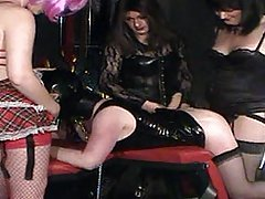 Kirsty and her TGirl friends fuck and abuse a horny gimp